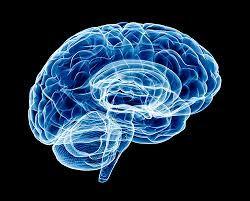 Home [mind-tech-brain-booster-64.webself.net]